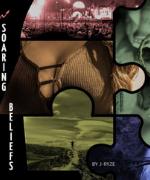 Soaring Beliefs Book Cover